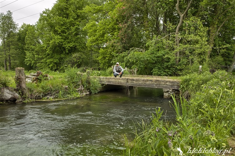 _River Test_2
