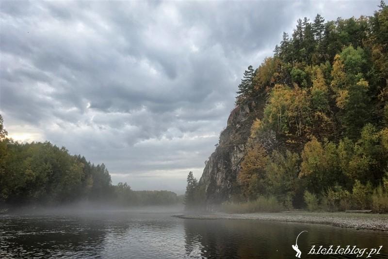 Syberia Tajmienie w deszczu_4